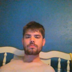 video gay adult