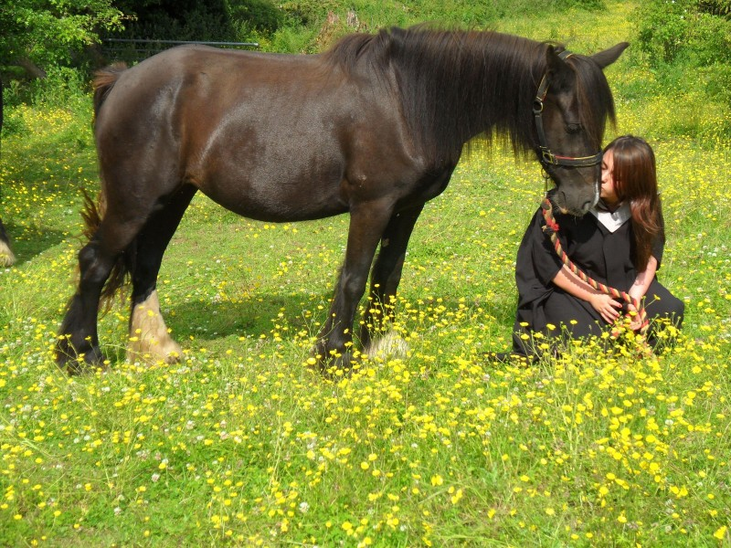 horse branch lesbian personals Horse branch's best 100% free lesbian dating site connect with other single lesbians in horse branch with mingle2's free horse branch lesbian personal ads place.